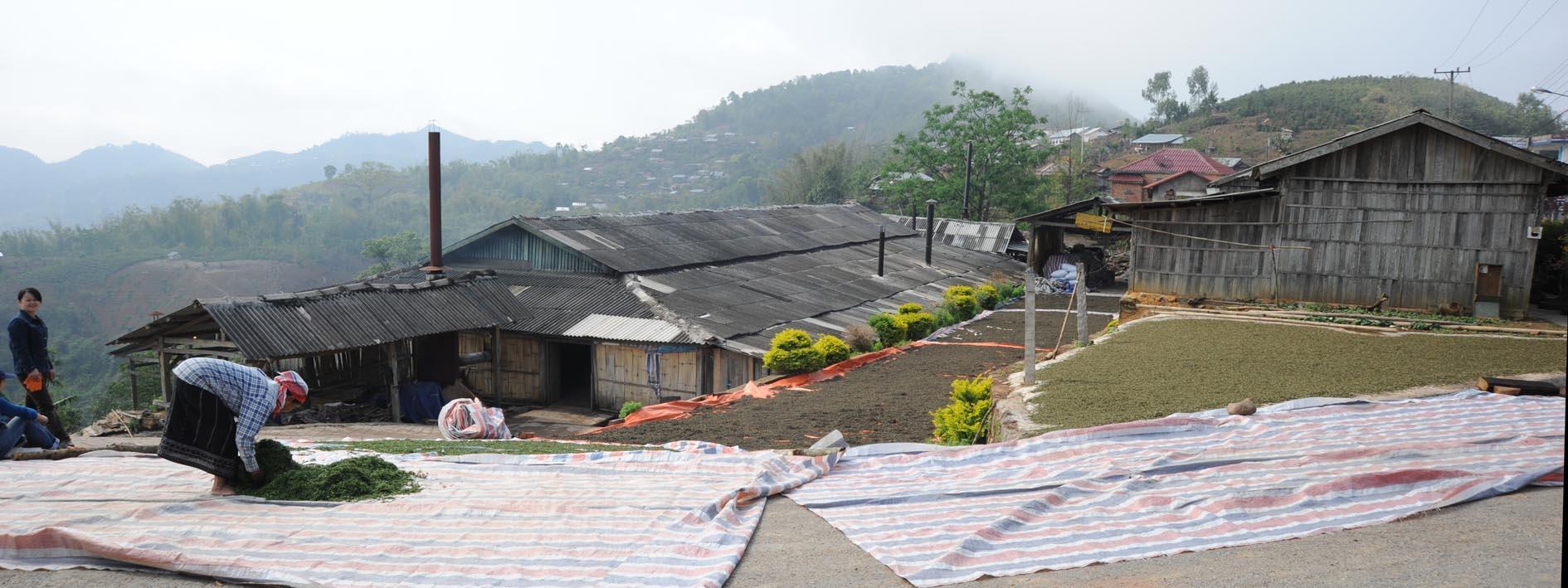 LaosP4
