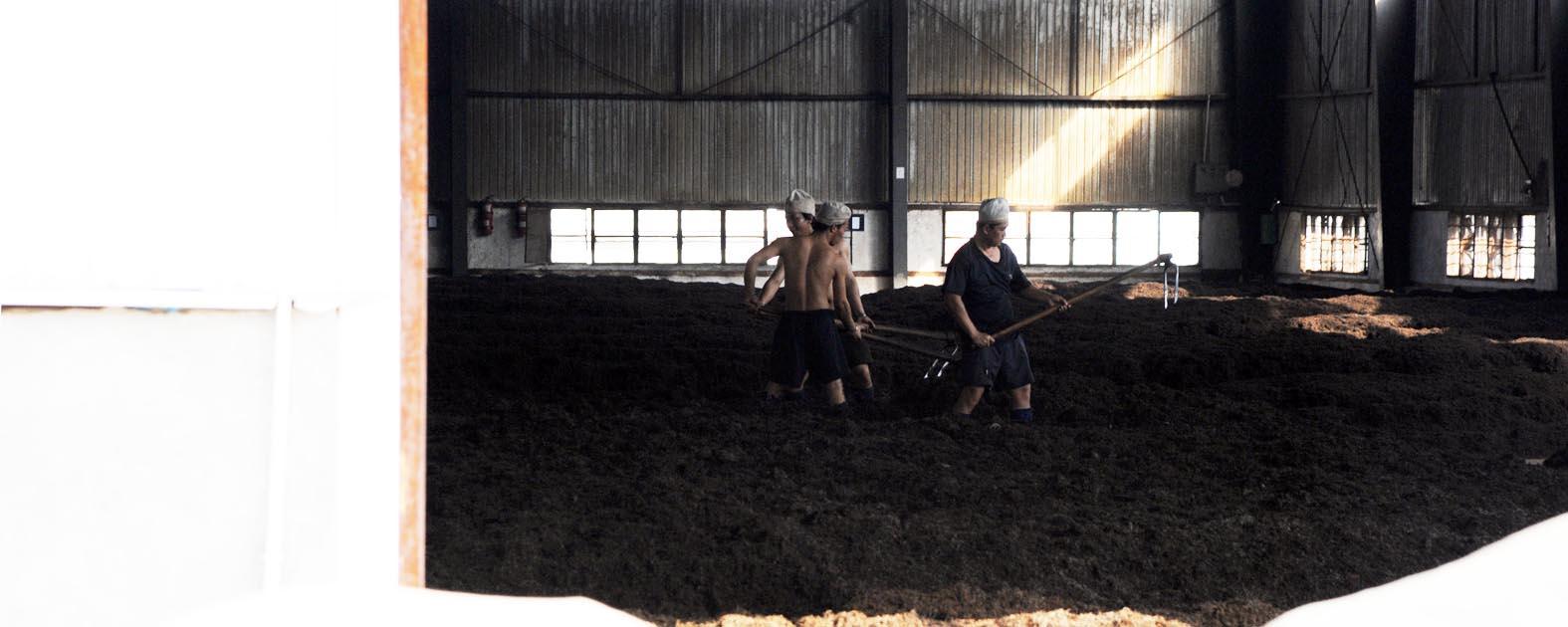 Digging Puer