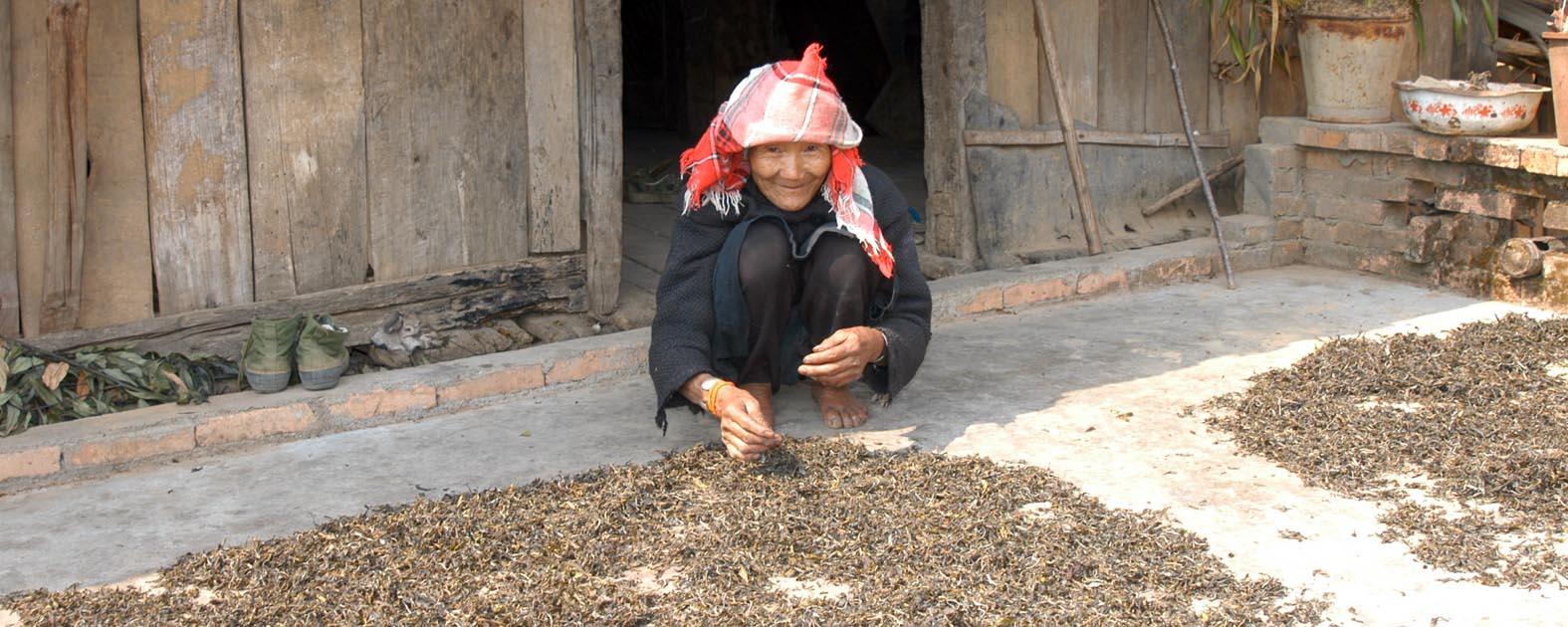 Tribal Tea Manufacturing